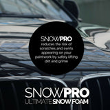 Snow Foam Shampoo Car Wax Wash 2x 5L Vehicle Soap 10L Clean Detailing pH Neutral