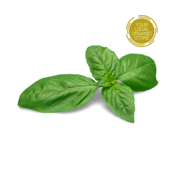 Sweet Basil (Bangalore Only)