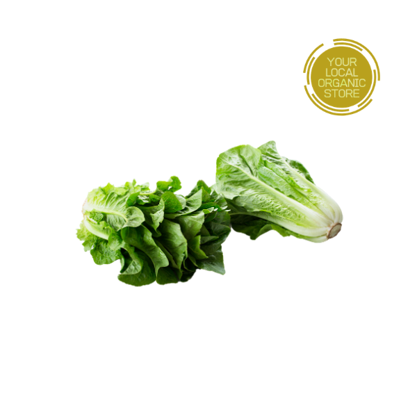 Lettuce Greek (Bangalore Only)