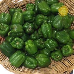 Capsicum Green (Bangalore Only)