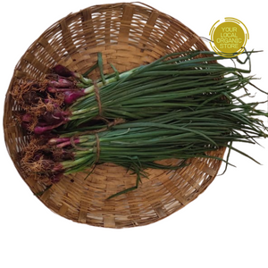 Spring Onion (Bunch) (Bangalore Only)