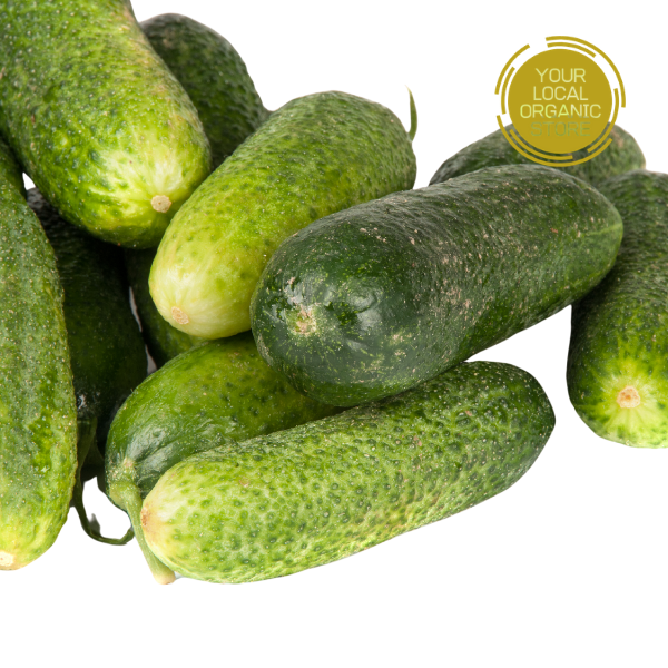 Cucumber Green (Bangalore Only)