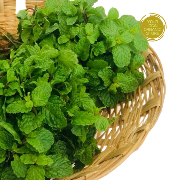 Mint (Bunch) (Bangalore Only)