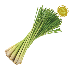 Lemon Grass (Bunch) (Bangalore Only)