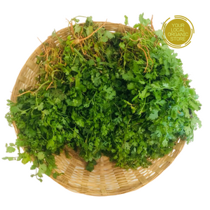 Coriander Naati (Bunch) (Bangalore Only)