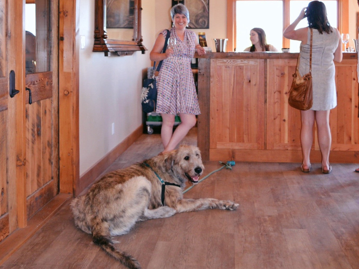 Cheers to wine tasting with your hound!