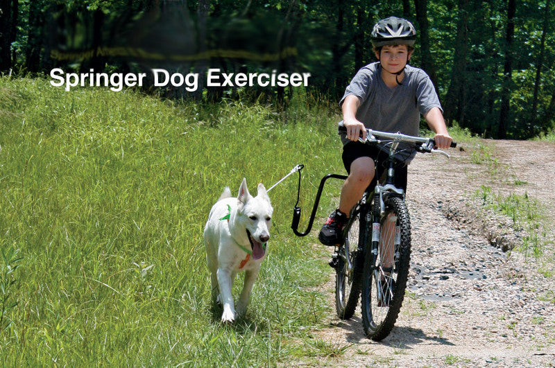 How to Bike with Your Dog