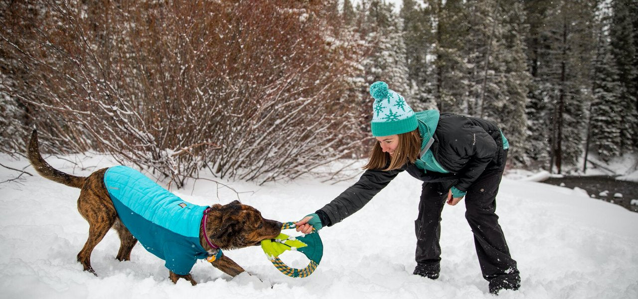 UBCO BARK Therapy Dog Program Official Veterinarian