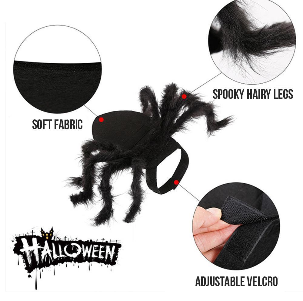 Spider Pet Halloween Costume Pets LuminousUnicorn