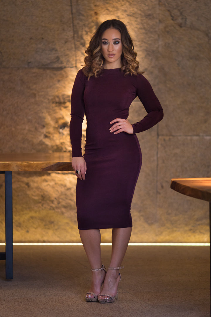 Long Sleeved High Round Neck Dress