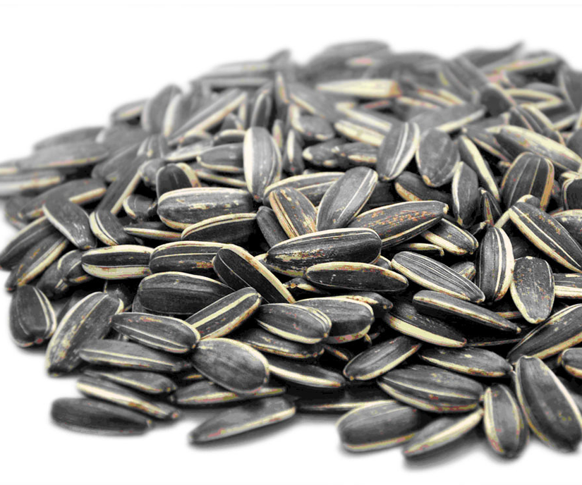 Uncle Cook's Sunflower Seeds