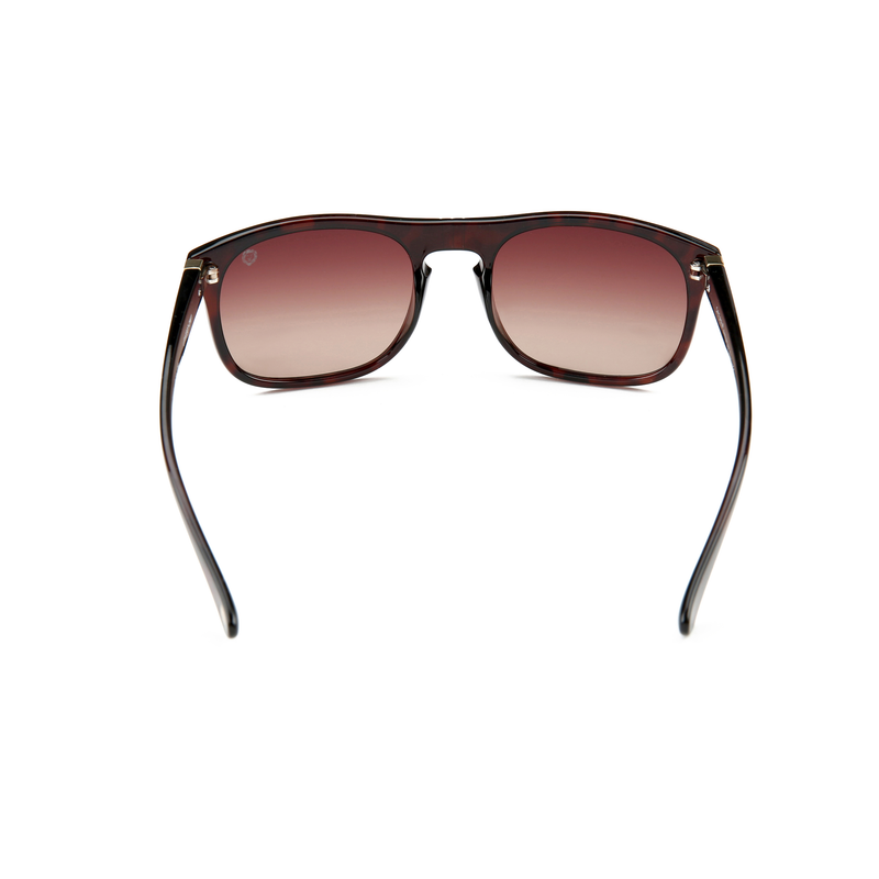 Safari LP10307 - SAFARI Eyewear Polarized Sunglasses - Your Best Travelling Companion
