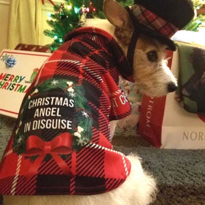 Christmas Angel in Disguise Dripping Dog Coat