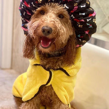 Load image into Gallery viewer, Dog in Dripping Dog Bathrobe After a Bath