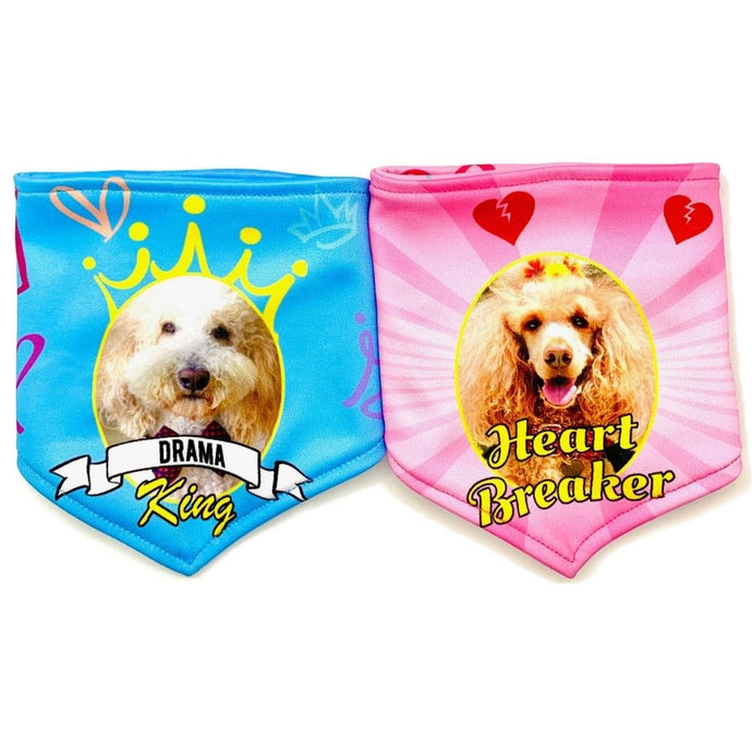 Heart Breaker & Drama Queen/King Custom Reversible Dog Bandana