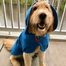 Load image into Gallery viewer, Beach Dood Hootie in Blue Dripping Dog Bathrobe