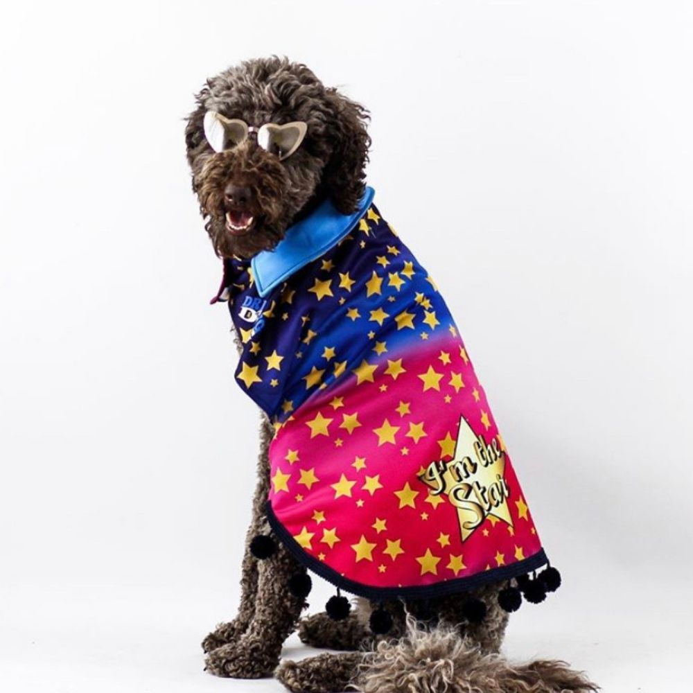 I'm a Star Dripping Dog Coat