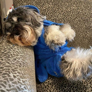 Vinny in Blue Dripping Dog Bathrobe