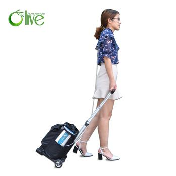 Olives Portable Oxygen Concentrator