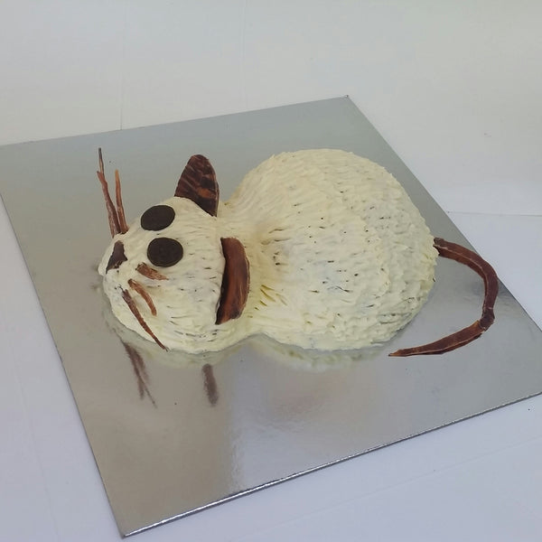 Mouse Cat Birthday Cake