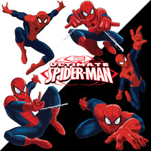 Load image into Gallery viewer, Spiderman Black & White Bg