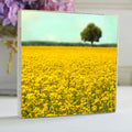 Yellow Fields 5x5 Art Block