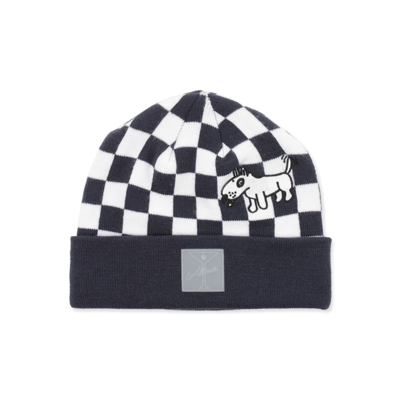 Vans X Alltimers Beanie Product Photo