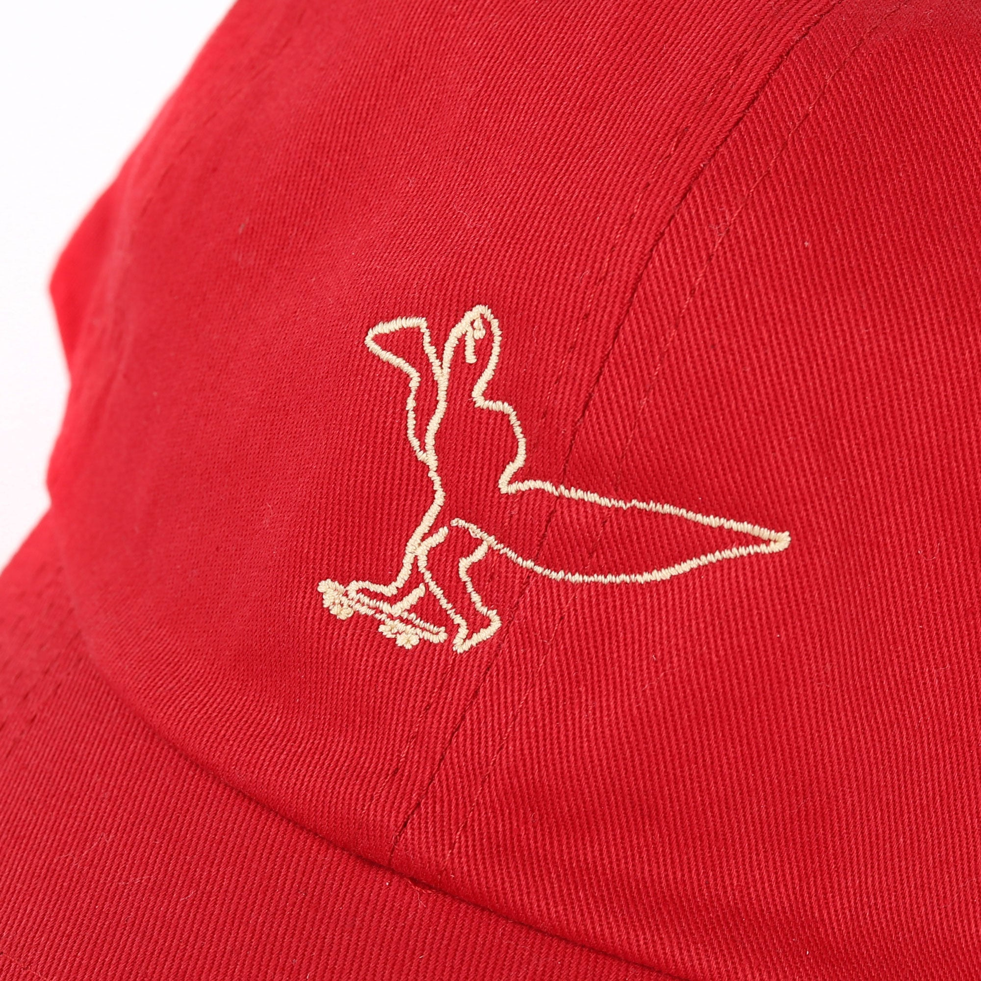 Beyond Gonz Cap Product Photo #2