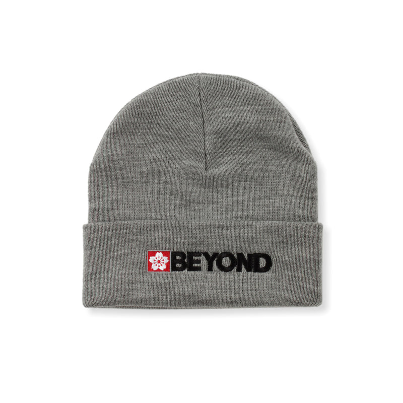 Beyond Solidified Beanie Product Photo