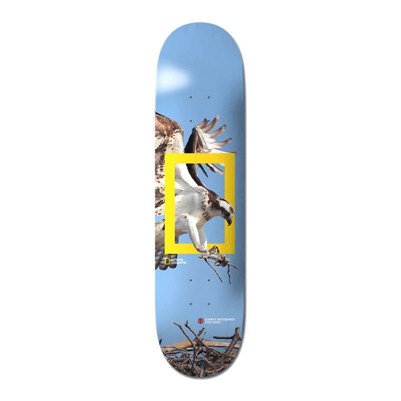 Element Nat Geo Team Osprey Deck Product Photo
