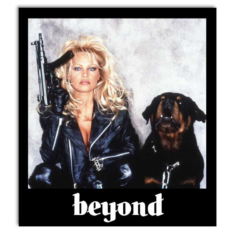 Beyond Barbwire Sticker Product Photo