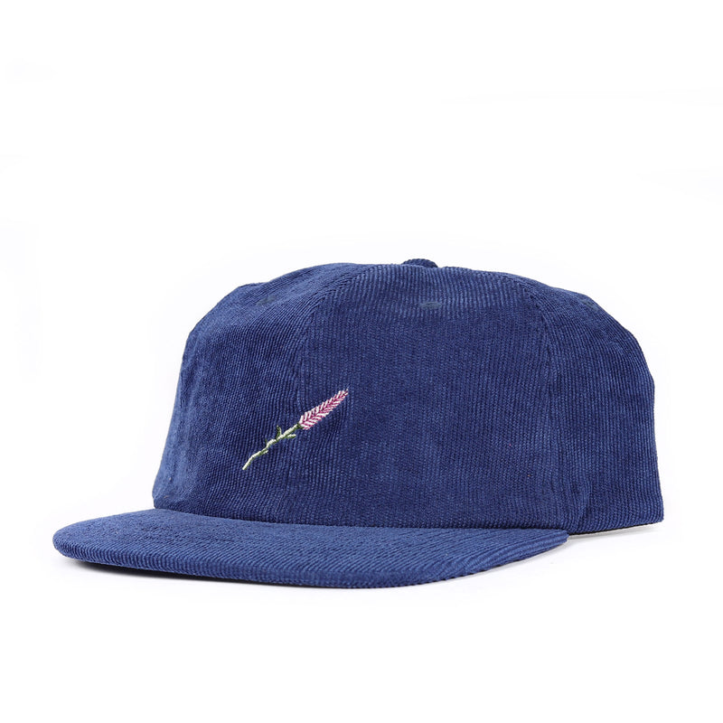 Passport Lavender 6 Panel Cap Product Photo