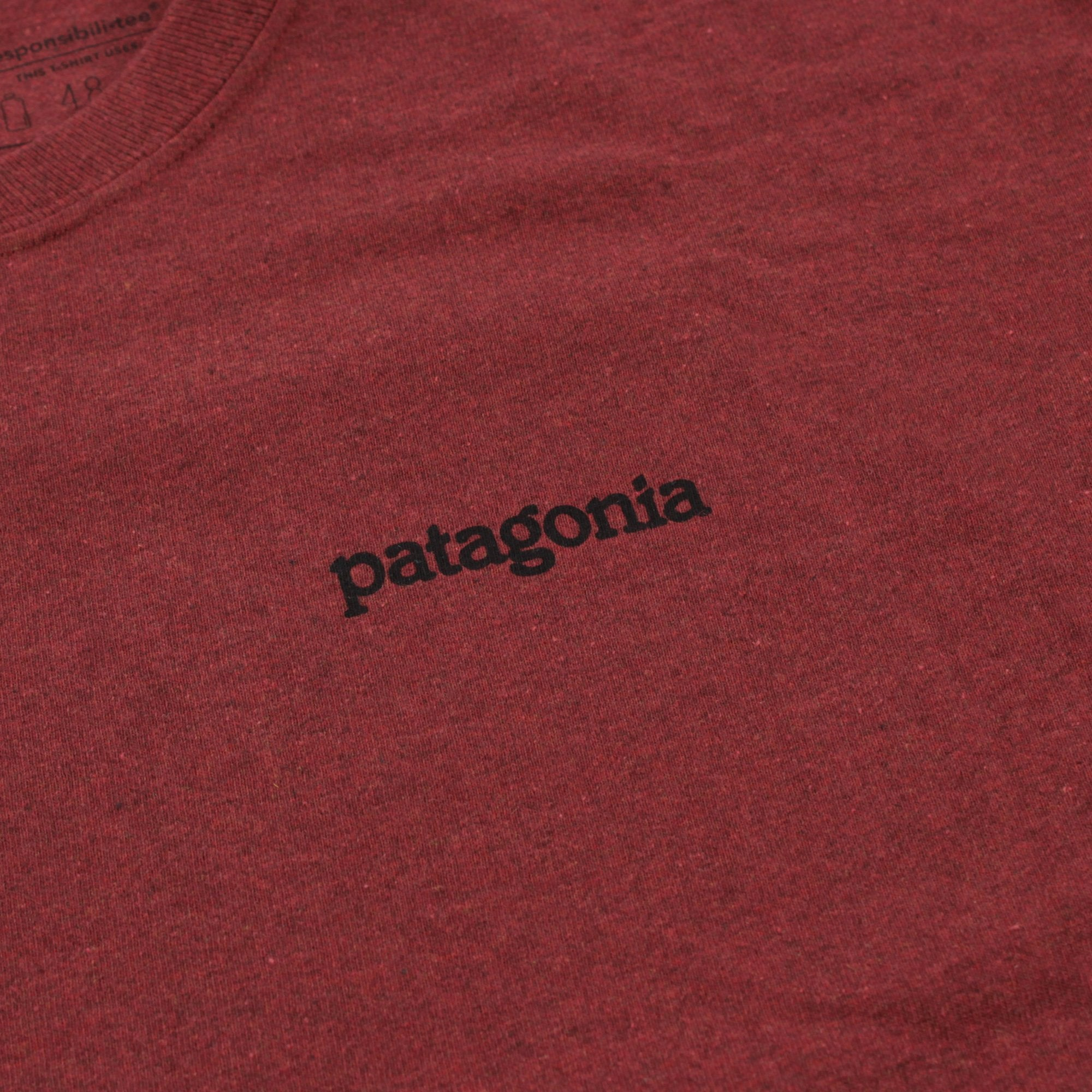 Patagonia Fitz Roy Horizons Tee Product Photo #4