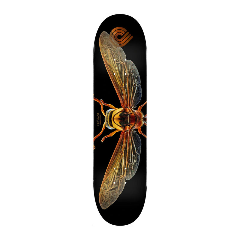 Powell Peralta Potter Wasp Deck Product Photo