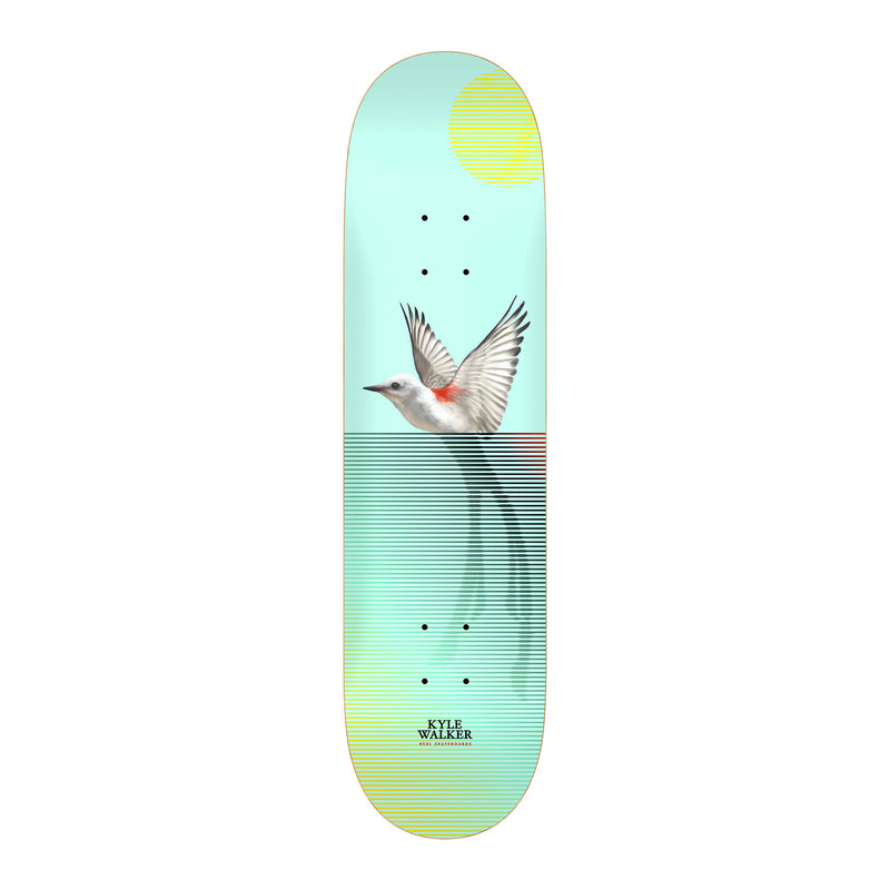 Real Segment Kyle Walker Deck Product Photo