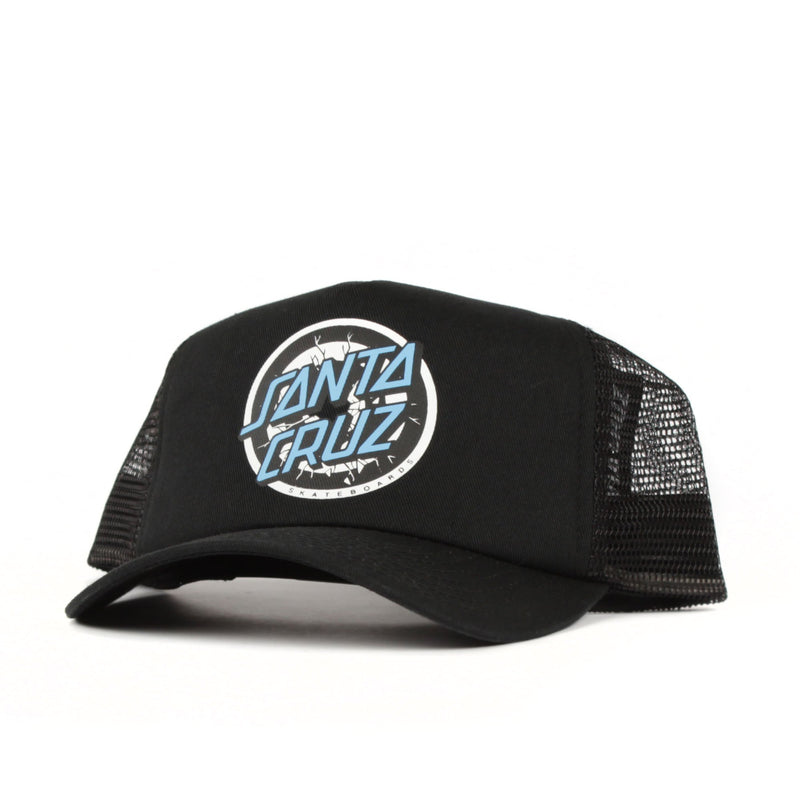 Santa Cruz Roskopp Target Cap Youth Product Photo