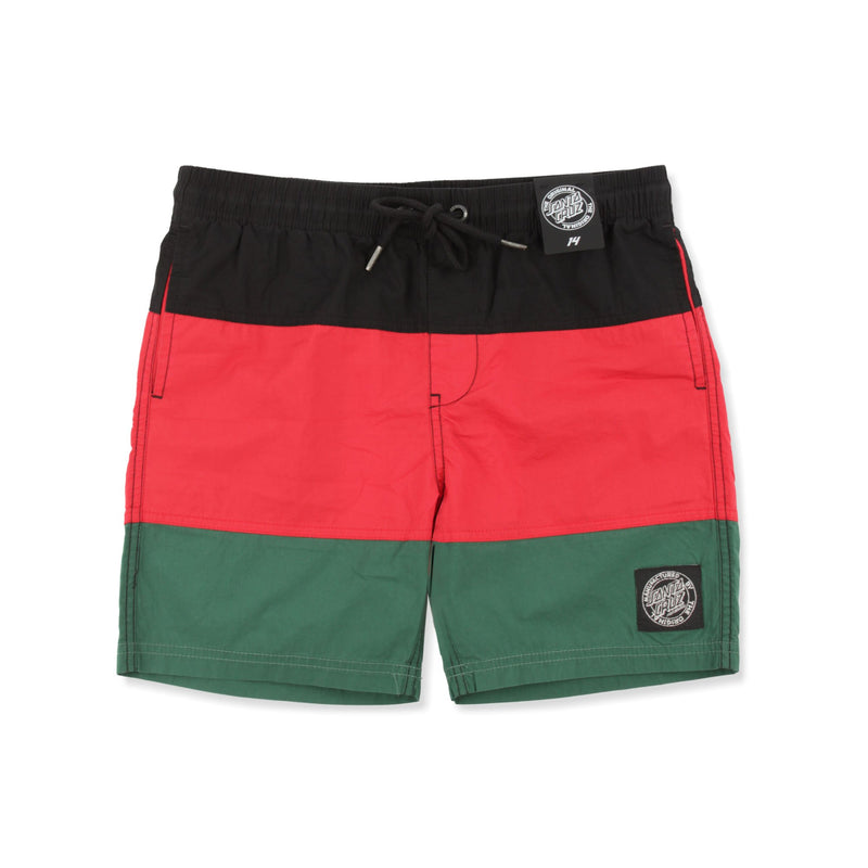 Santa Cruz Block Shorts (Youth) Product Photo