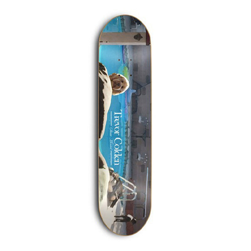 Skate Mental Sponge Colden Deck Product Photo