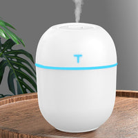 LED Night Light Ultrasonic Mini Air Humidifier