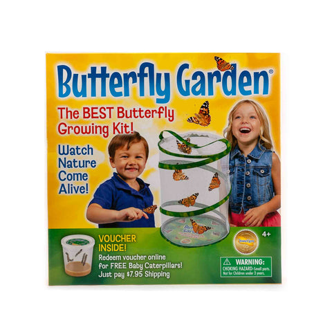 medium sized butterfly habitat