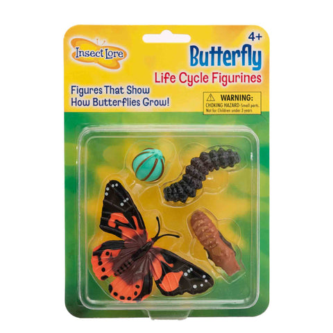butterfly metamorphosis set