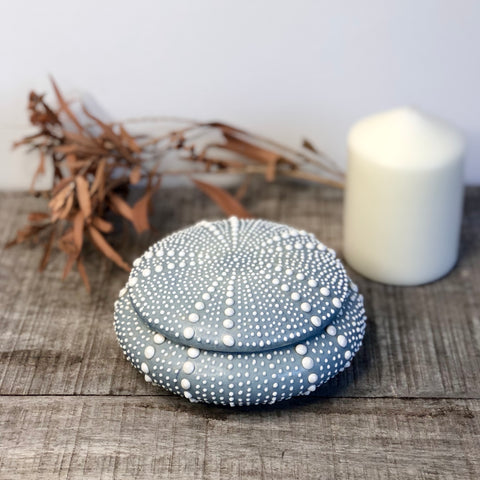 Sea urchin shell jar