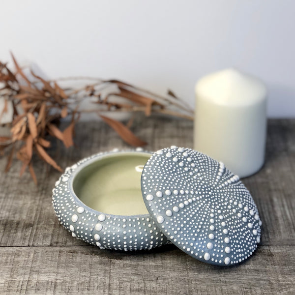 Australian gift, crystal, decor online shop: Sea urchin shell jar