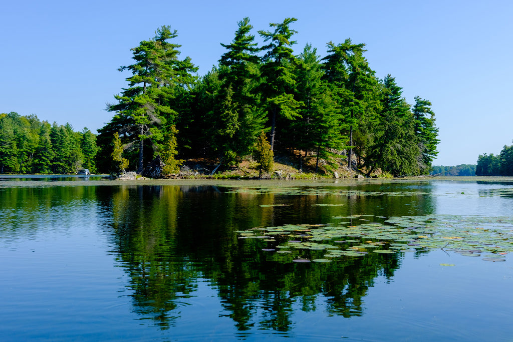 island in lake northern ontario