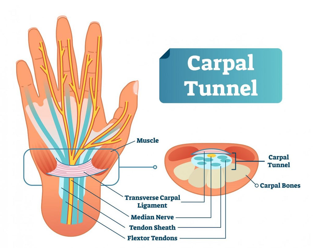 diagram of carpal tunnel