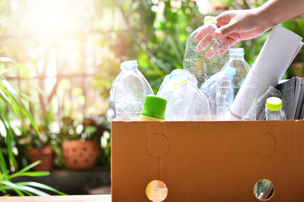 Picture of Recycling Plastic Bottles Earthing