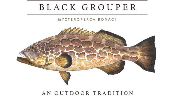 GROUPER PERFORMANCE T-SHIRT IN STONE