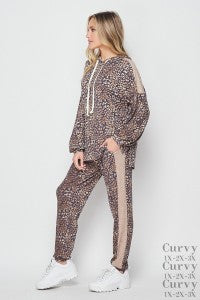 NAVY/MOCHA Plus Size Leopard Pants