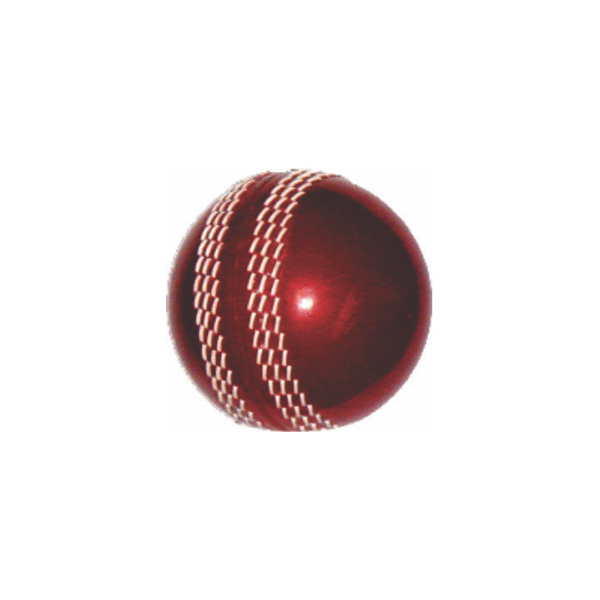 Cricket Poly Soft Ball
