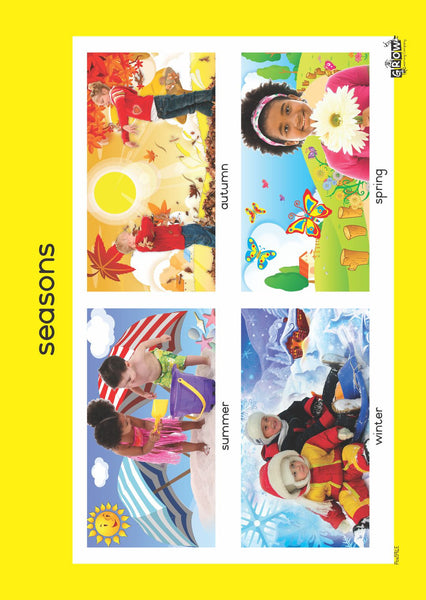 Theme - Weather (Set of 3)